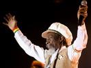Bunny Wailer (Made in Jamaica)