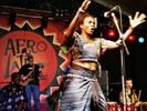 Dzidzolie op Afro-Latino festival 2006