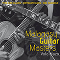 Malagasy Guitar Heroes