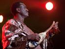 AfroCubism (Sfinks Mixed 2011) — Bassekou Kouyaté